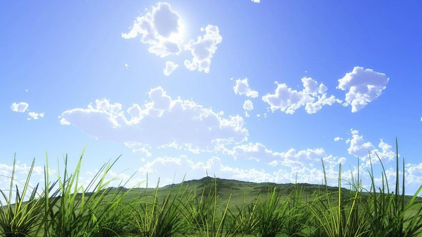 l'herbe verte du voisin envie ellecroit.com