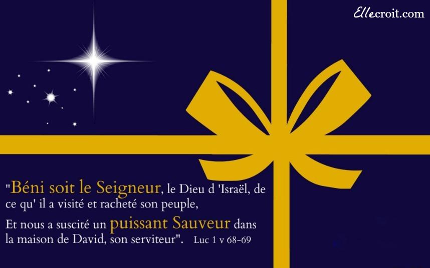 Christ redempteur luc 1.68 69