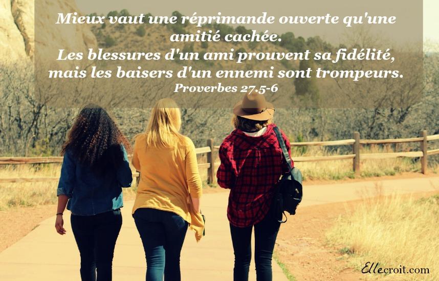 proverbes 27.5-6 amitié ellecroit.com