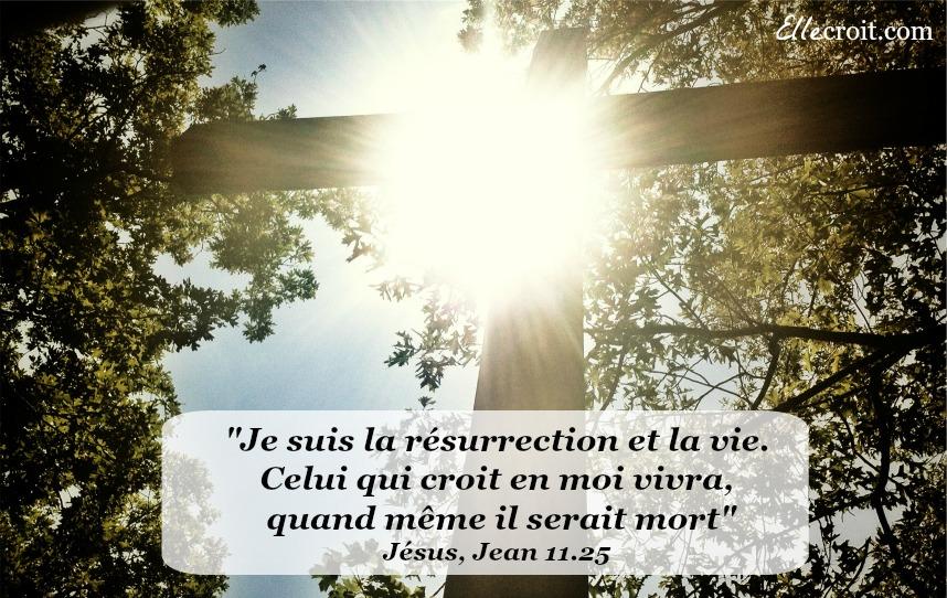 jean 11.25 résurrection Jésus ellecroit.com
