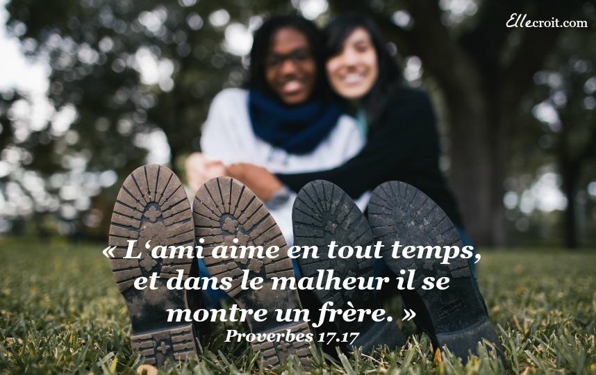 proverbes 17 v17 amitié ellecroit.com