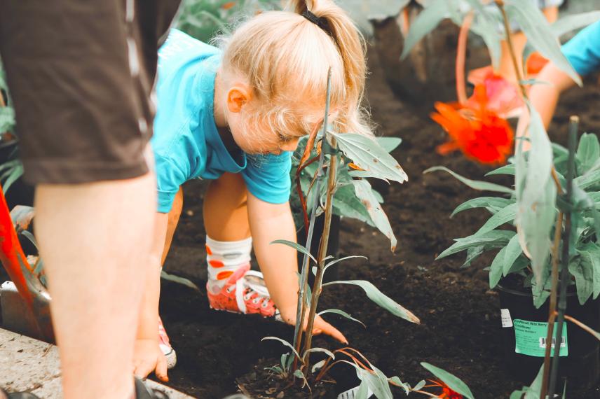 école maison jardinage ellecroit.com